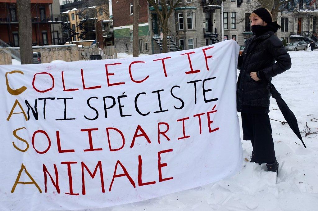 Activiste-8.jpg