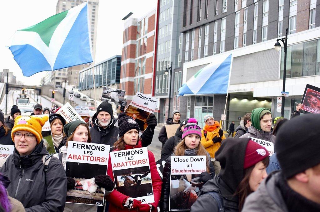 Activiste-18.jpg